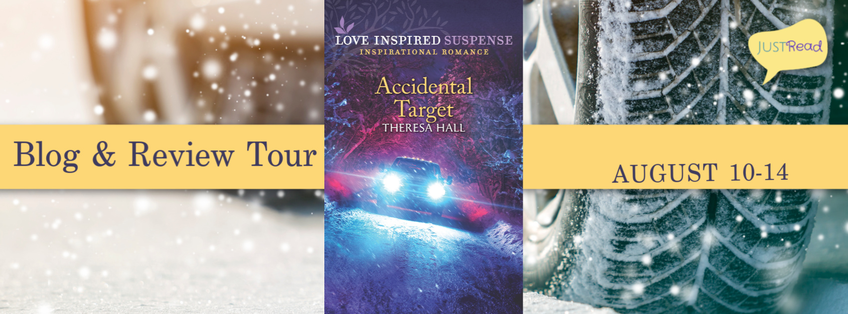 Welcome to the Accidental Target Blog Tour & Giveaway!