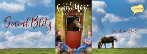 The Ginnie West Adventure Collection JustRead Social Blitz